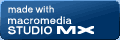 Macromedia Studio MX Web Site
